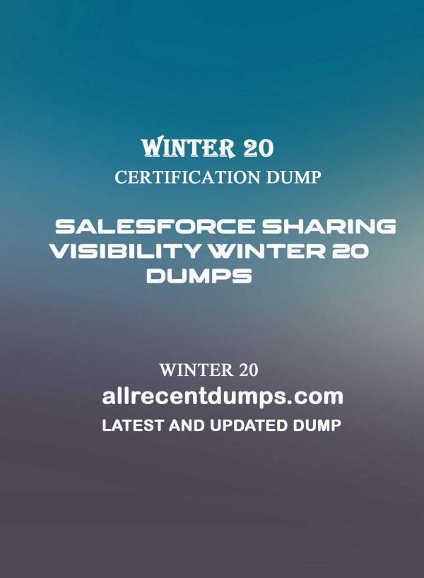 Salesforce Sharing visibility Winter 20 Dumps – WI20 Dumps