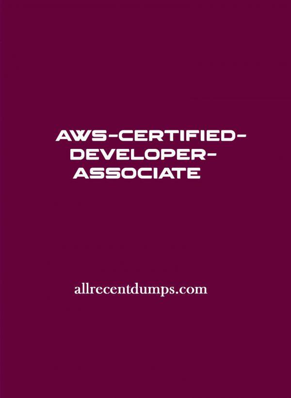 AWS Certified Developer Associate Dumps